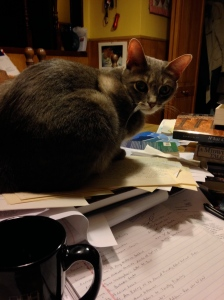 My assistant sits on Mt. Chaos