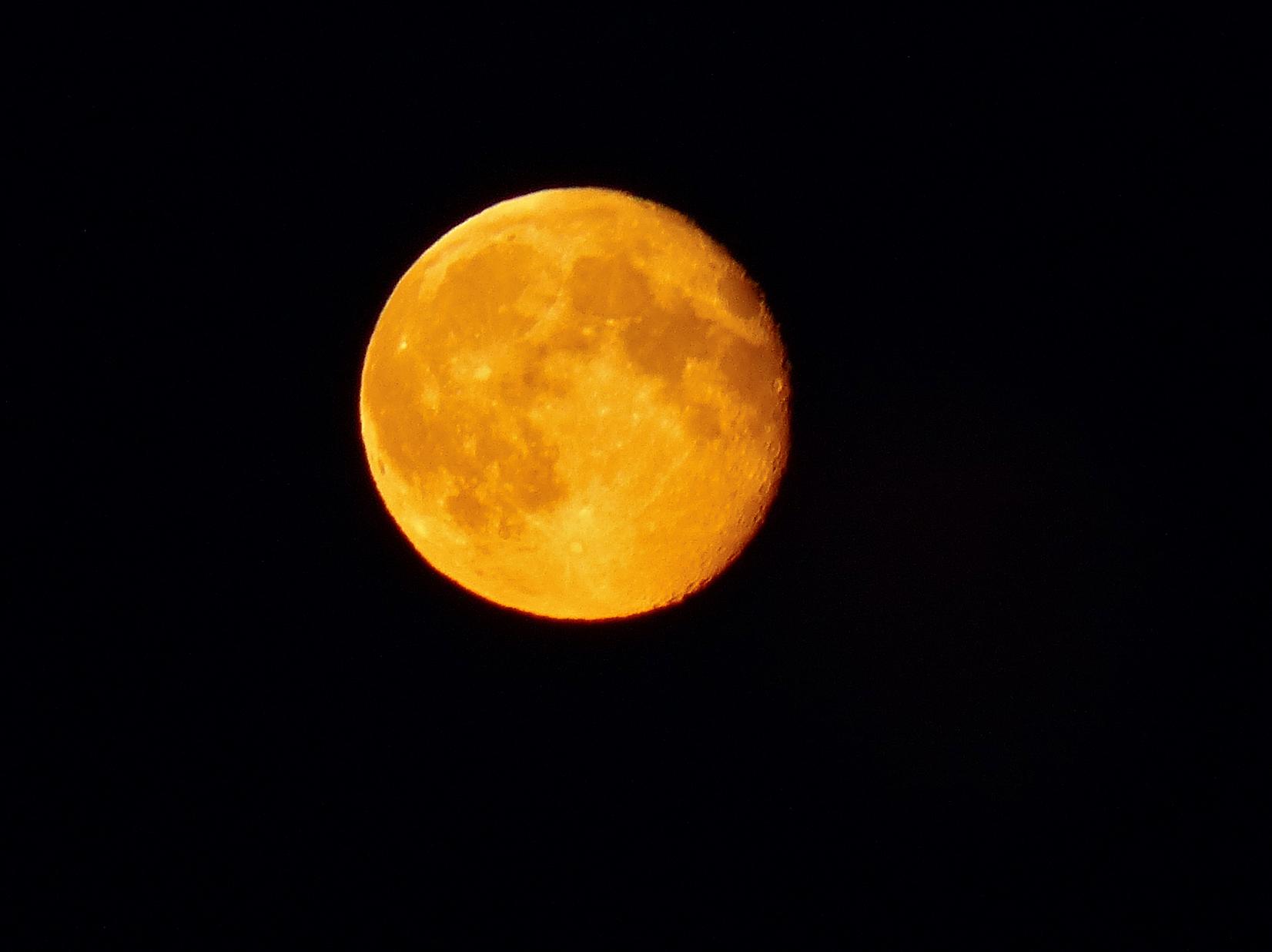 harvest_moon-_7916064846