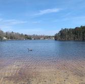 Hammonton Lake Parl