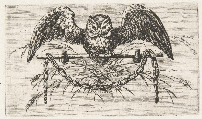 Vignette with an Owl on a Perch From Baron O.H. von Gemmingen (translator), Milton's Allegro und Penseroso (Mannheim: Schwanischen Buchhandlung, 1782) Ferdinand Kobell, German, 1740 - 1799