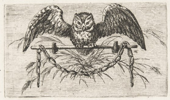 Vignette with an Owl on a Perch From Baron O.H. von Gemmingen (translator), Milton's Allegro und Penseroso (Mannheim: Schwanischen Buchhandlung, 1782) Ferdinand Kobell, German, 1740 - 1799