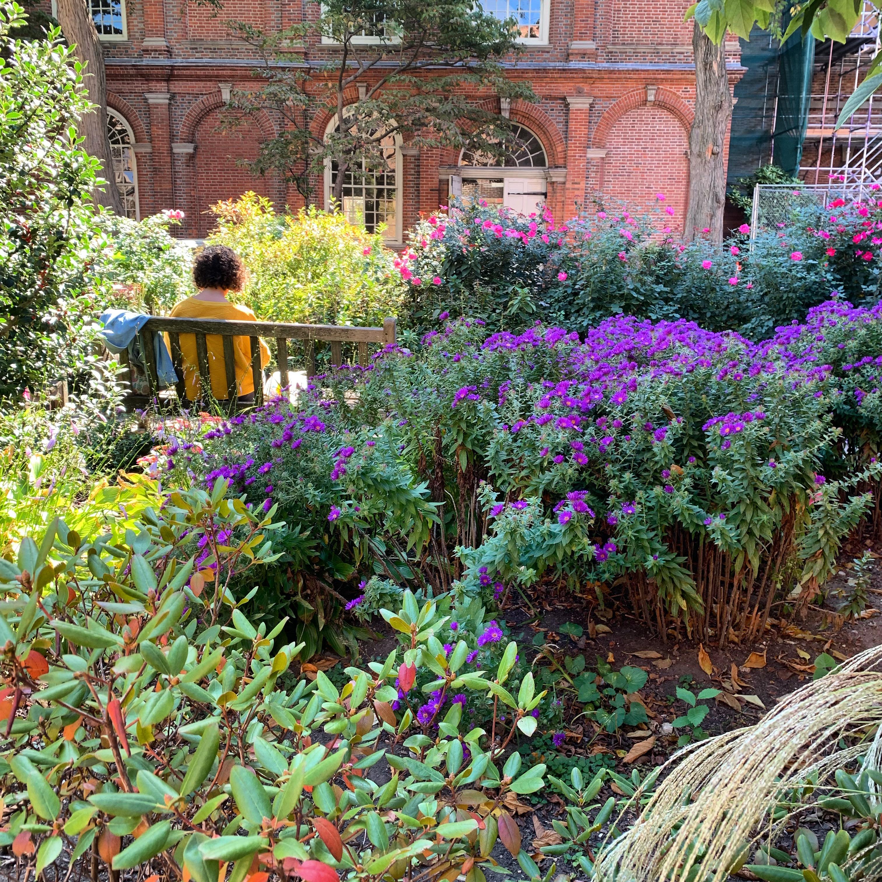 Garden at Christ Church, Philadelphia    Merril D. Smith, October 2019