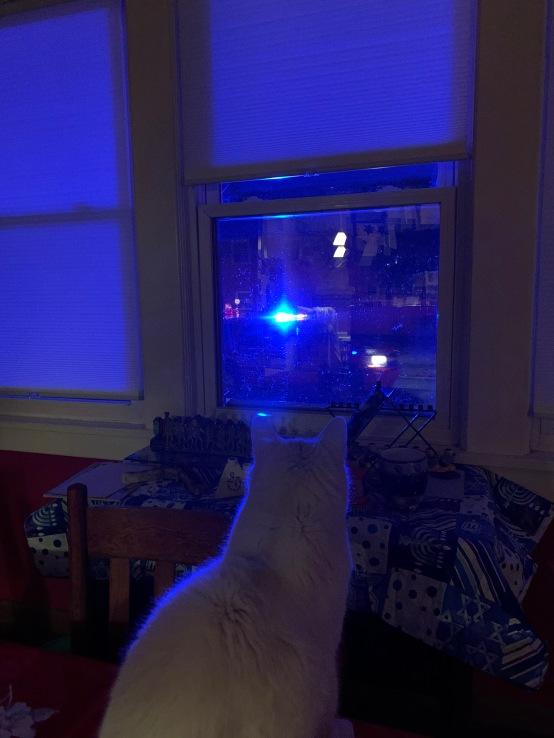 Watching for Santa around Hanukkah decorations